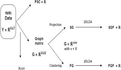 Frontiers | Classifying Cognitive Profiles Using Machine