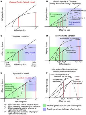 Frontiers Plant And Animal Reproductive Strategies