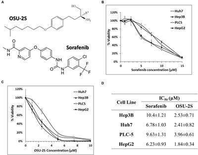 Frontiers | OSU-2S/Sorafenib Synergistic Antitumor