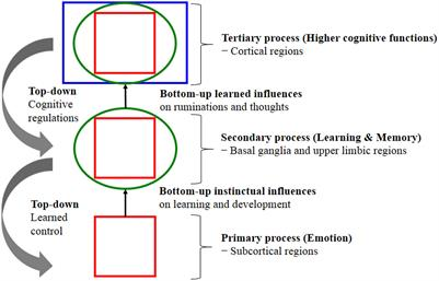Frontiers the influences of emotion on learning and memory frontiers the influences of emotion on learning and memory psychology ccuart Choice Image