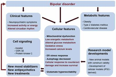 Frontiers | Molecular Mechanisms of Bipolar Disorder