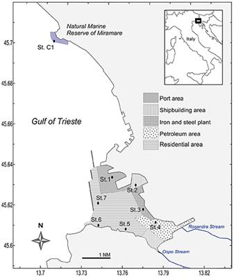 Frontiers | The Port of Trieste (Northern Adriatic Sea)—A Case Study