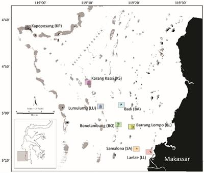 Frontiers Spatio Temporal Patterns In Coral Reef