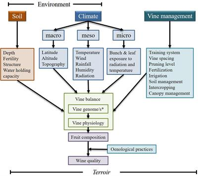 Types Of Email Accounts >> Frontiers | A Concise Review on Multi-Omics Data ...
