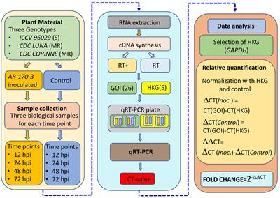 Frontiers | Genetic Analysis of NBS-LRR Gene Family in