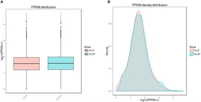 Frontiers | Transcriptional Responses of Candida albicans to
