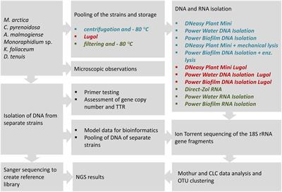 frontiers sample preservation dna or rna extraction and data analysis for high throughput phytoplankton community sequencing microbiology