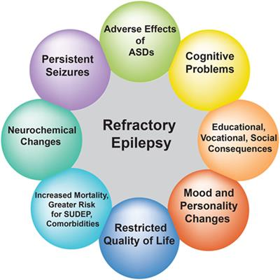 Frontiers | Drug-Resistant Epilepsy: Multiple Hypotheses, Few