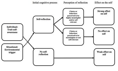 The Effect of Trait Self-Awareness, Self-Reflection, and Perceptions of Choice Meaningfulness on Indicators of Social Identity within a Decision-Making Context