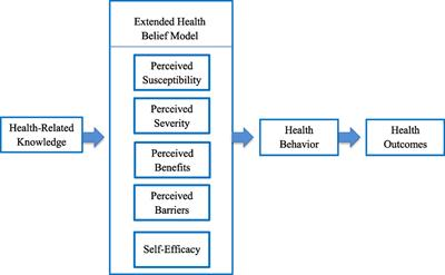 and Health belief immunizations model adult