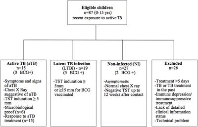 Frontiers | Age-Stratified T Cell Responses in Children