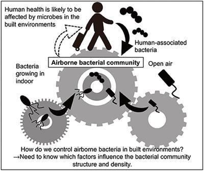 airborne bacteria in indoor environments