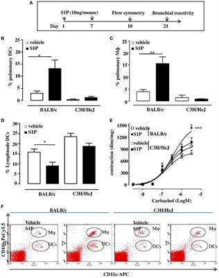 Frontiers   Toll-Like Receptor 4 Is Essential for the ... on