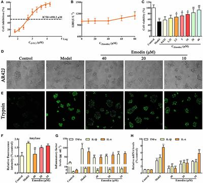 Frontiers | Emodin Alleviates Sodium Taurocholate-Induced