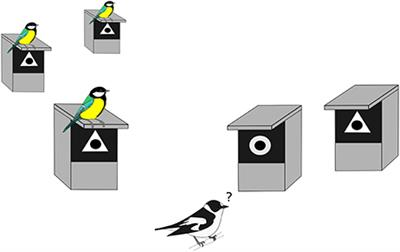Frontiers   Heterospecific Nest Site Copying Behavior In A Wild Bird:  Assessing The Influence Of Genetics And Past Experience On A Joint Breeding  Phenotype ...