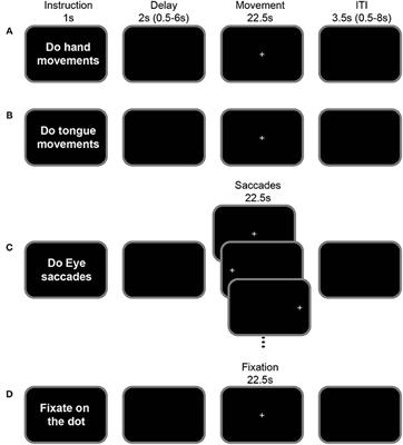 Frontiers | Rostro-Caudal Organization of Connectivity between