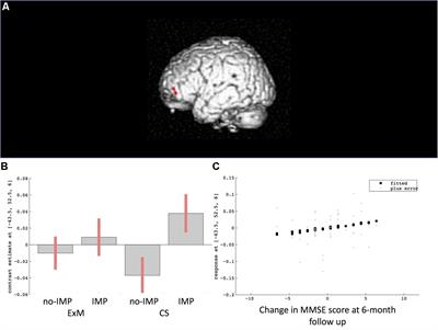 Frontiers | Cognitive Function and Brain Atrophy Predict Non