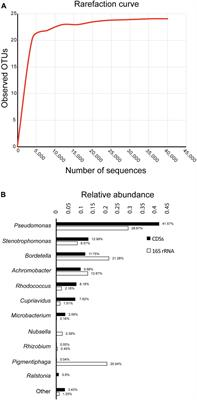 Frontiers | Metagenomic Analysis of a Biphenyl-Degrading Soil