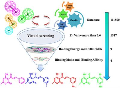 Frontiers Combination Of Virtual Screening Protocol By