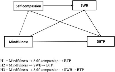 Frontiers | Self-Compassion and Subjective Well-Being