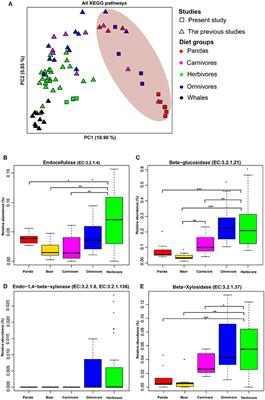 Frontiers | Metagenomic Study Suggests That the Gut Microbiota of