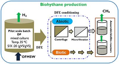 Frontiers | Co-production of Hydrogen and Methane From the