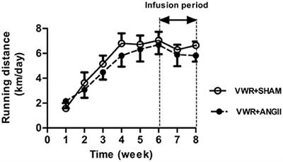 Frontiers | Exercise Protects Against Defective Insulin