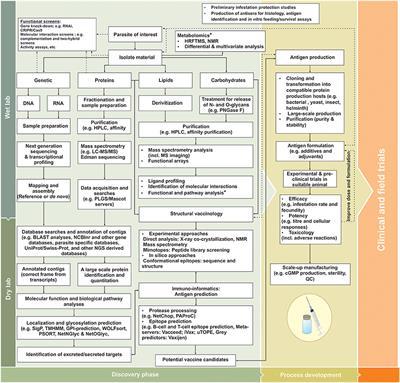 Frontiers | Metazoan Parasite Vaccines: Present Status and
