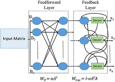 Frontiers | Computing Generalized Matrix Inverse on Spiking