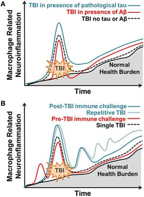 Frontiers | The Inflammatory Continuum of Traumatic Brain