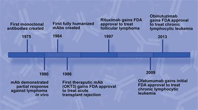 Frontiers | Past, Present, and Future of Rituximab—The