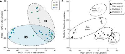 Frontiers | Coral Bacterial-Core Abundance and Network