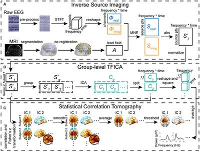 Frontiers | Cortical Statistical Correlation Tomography of