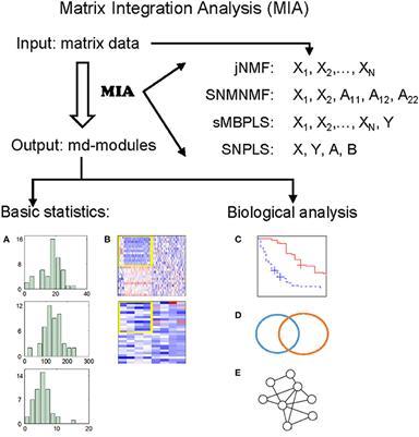 Frontiers | Matrix Integrative Analysis (MIA) of Multiple Genomic