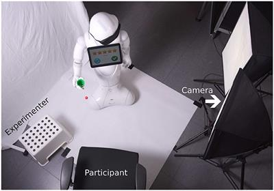 Frontiers | A User Study on Robot Skill Learning Without a
