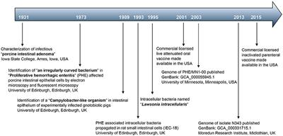Frontiers | Lawsonia intracellularis: Revisiting the Disease