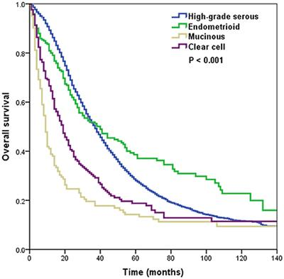 Frontiers The Effect Of Histological Subtypes On Outcomes Of Stage Iv Epithelial Ovarian Cancer Oncology