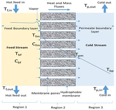 Frontiers | Heat and Mass Transport in Modeling Membrane