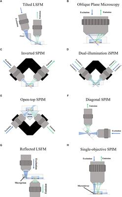 Frontiers   Applications of Light-Sheet Microscopy in ... on