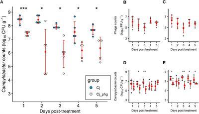 Frontiers | Phage Biocontrol of Campylobacter jejuni in