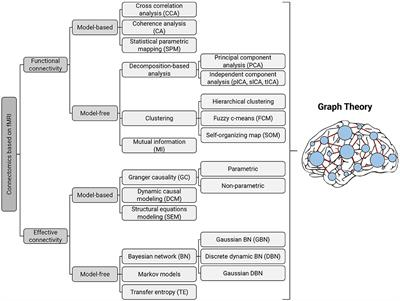 Frontiers | Application of Graph Theory for Identifying ...