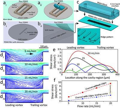 Frontiers | A Microfluidic System for Studying the Effects