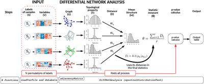 Frontiers   BioNetStat: A Tool for Biological Networks