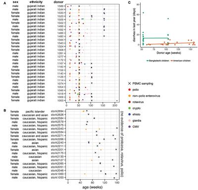 Increased T Cell Differentiation and Cytolytic Function in Bangladeshi Compared to American Children