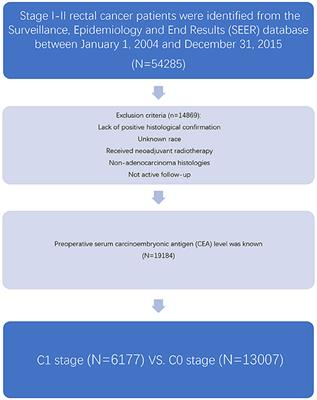 Ociation Of T Stage And Serum Cea