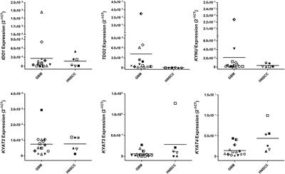 Activation of the Kynurenine Pathway in Human Malignancies Can Be Suppressed by the Cyclin-Dependent Kinase Inhibitor Dinaciclib