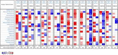 Identification of Therapeutic Targets and Prognostic Biomarkers Among CXC Chemokines in the Renal Cell Carcinoma Microenvironment