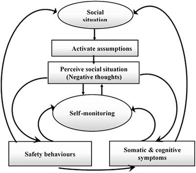 Frontiers Review Of Eeg Erp And Brain Connectivity Estimators As Predictive Biomarkers Of Social Anxiety Disorder Psychology
