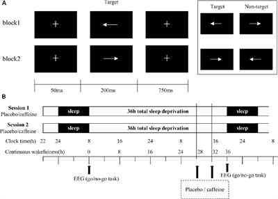Effects of Caffeine on Event-Related Potentials and Neuropsychological Indices After Sleep Deprivation
