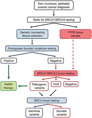 Frontiers Tumor Testing For Somatic And Germline Brca1 Brca2 Variants In Ovarian Cancer Patients In The Context Of Strong Founder Effects Oncology